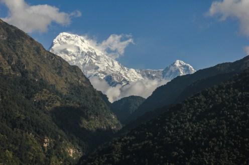 Morgendlicher Blick auf Annapurna South und Hiunchuli