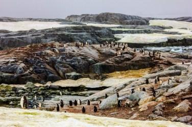Petermann Island, Ort unserer ersten Landung in der Antarktis