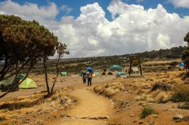 Ankunft am Shira Plateau Camp