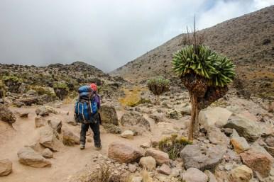 Auf dem Weg ins Barranco Camp