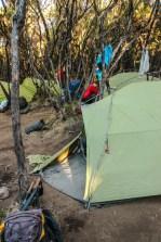 Mweka Camp