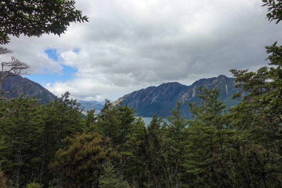 Ausblick auf Lake Sumner vom Kiwi Saddle