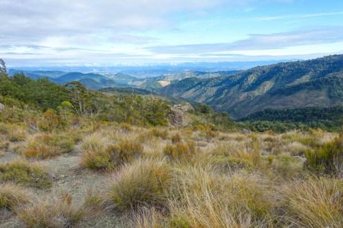 57. Tag (21,4km) - Browning Hut bis Captains Creek Hut: Aussicht vom Totara Saddle