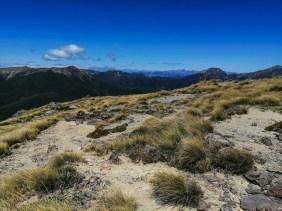 Blick von Mt Starveall