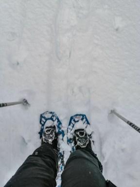Schneeschuhwanderung im Pillerseetal