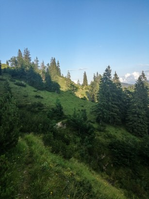 Letzter Aufstieg auf dem Weg zur Riedebenbergalm