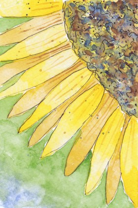 Sunflower. 4 x 6 postcard, watercolor and pen on 140 lb. cold press paper. © 2013 Sheila Delgado. RAG Memory:International mail Art Exhibition and Swap.