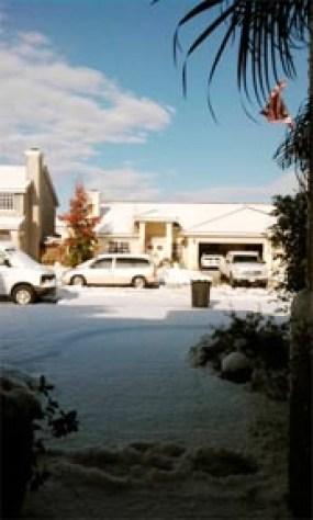 Snow dec 31