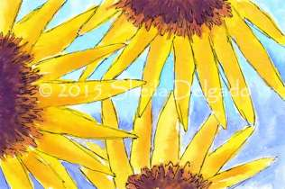 Sunflowers. 4 x 6 pen and watercolor. 2015 Sheila Delgado