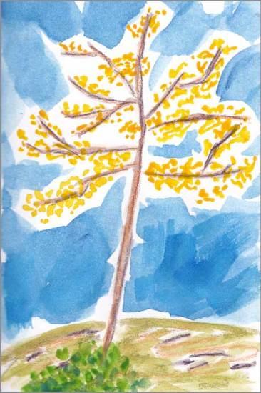 Yellow Tree Sketch. 4 x 6 watercolor on paper. © 2018 Sheila Delgado