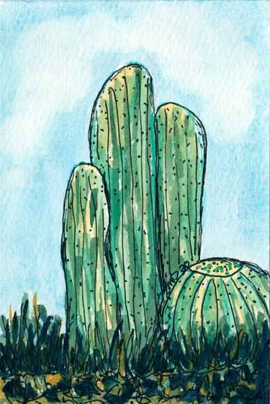 Caucus. 4 x 6 watercolor & pen on paper. © 2020 Sheila Delgado.