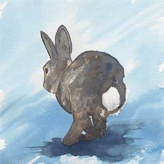 Bunny Study, 8 x 8 watercolor on Arches 140 lb. cold-pressed paper. © 2020 Sheila Delgado.