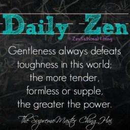 Daily Zenhai 7