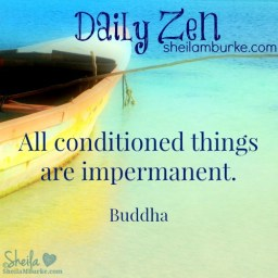 daily zen mar 23