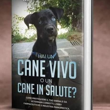 cane_vivo_o_cane_in_salute