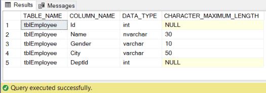 image information schema view in SQL result