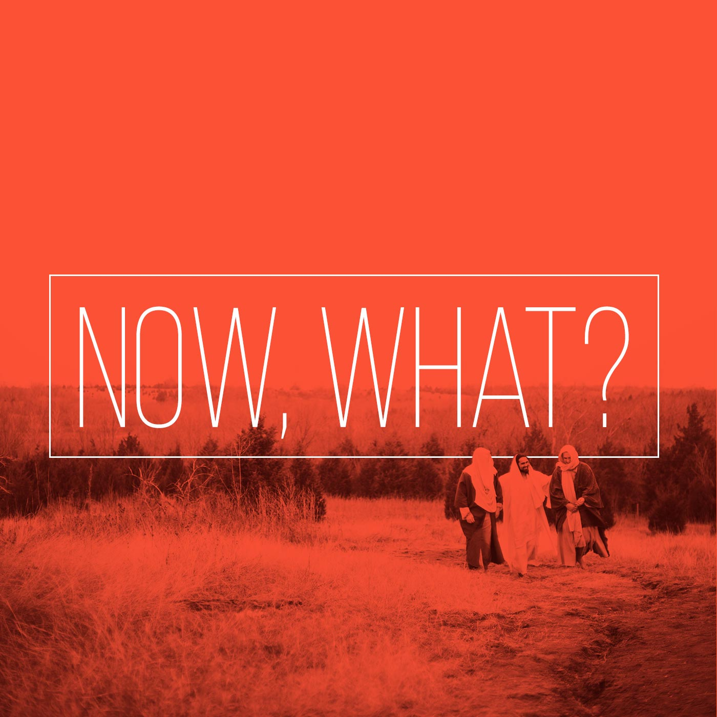 nowwhat-square