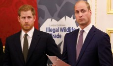Prince Harry Finally Opens Up About Rumored Rift With Prince William & Their 'Different Paths'