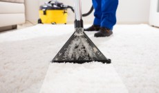 The Best Carpet Cleaners for Spotless Rugs