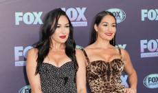 Nikki Bella & Brie Bella Welcome Baby Boys — & Share Almost Identical Baby Pics!