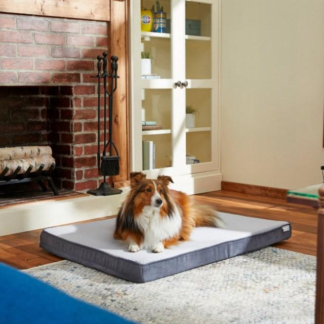 orthopedic-cooling-dog-bed