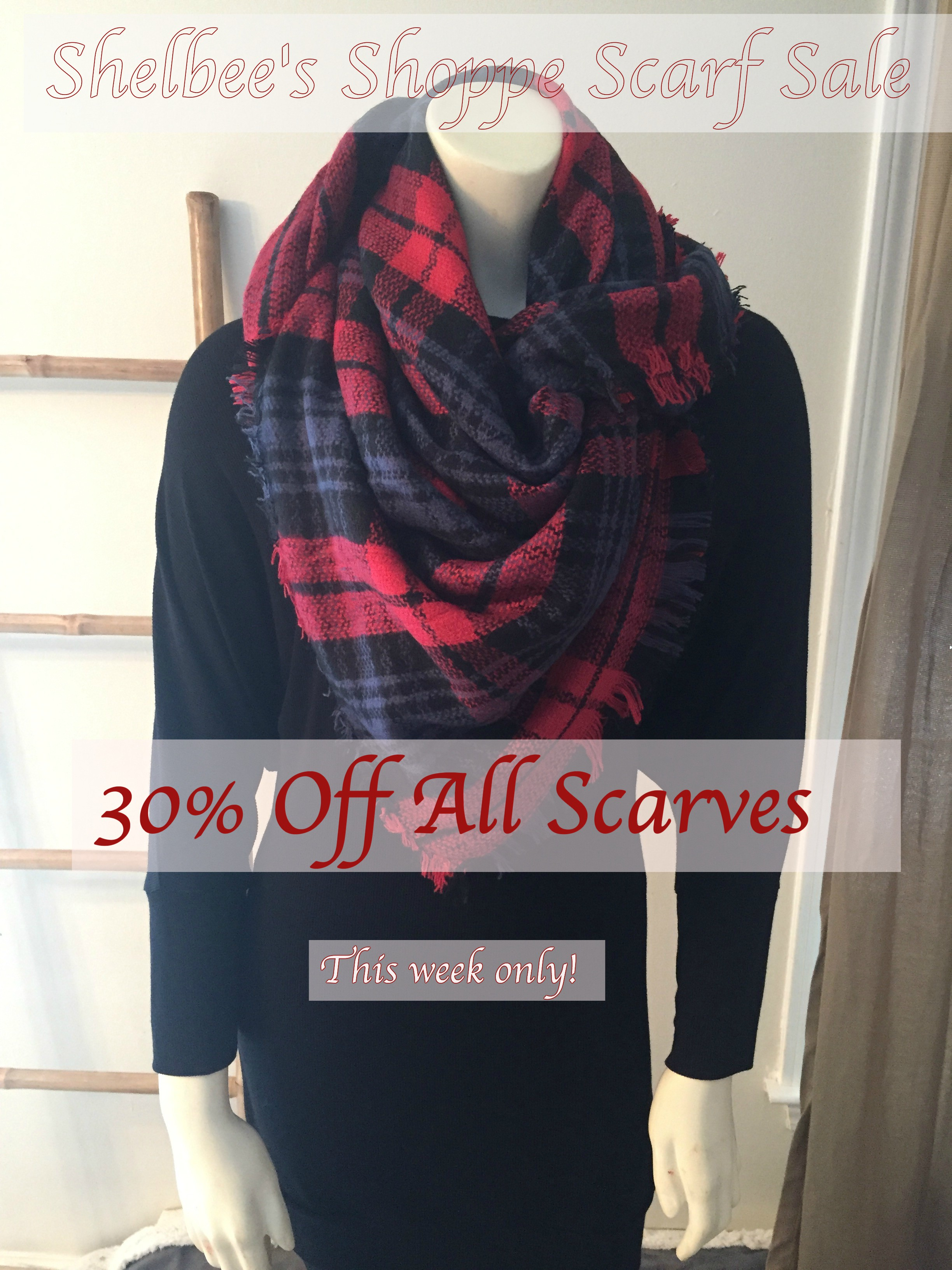 Scarf Sale! 30% OFF All Shelbee's Shoppe Scarves