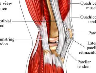 Knee Pain Walking up Stairs What is Your Weight