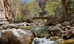 Shell Creek in Shell Canyon
