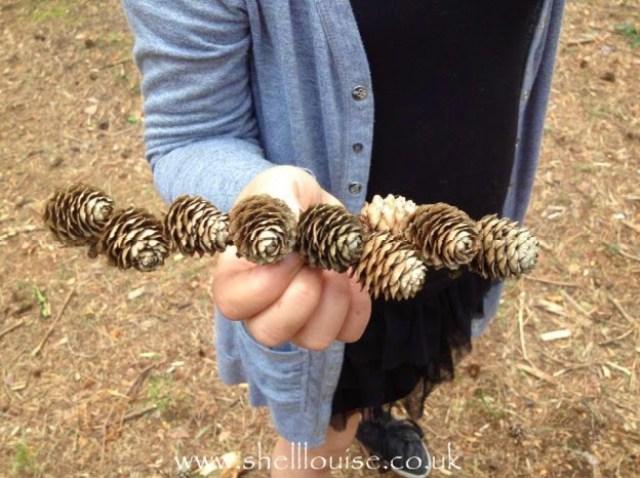 KayCee found some pine cones