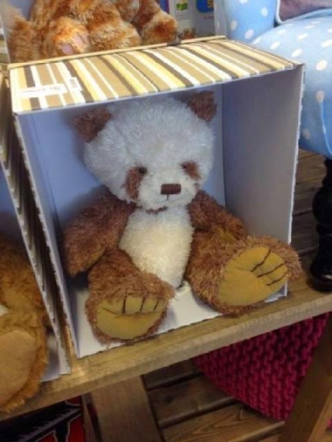 Teddy at Home sense