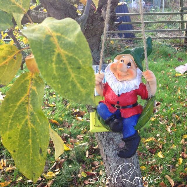 week 9 - a gnome swinging in the apple tree