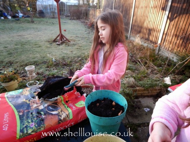 Ella covering the summer bulbs with compost