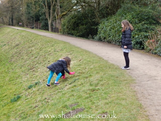 Ella climbing up the hill after rolling down it at Rufford Abbey