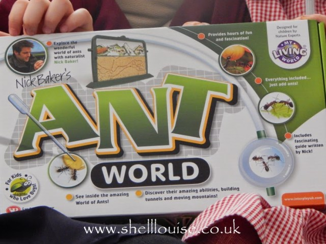Ant World from Wicked Uncle