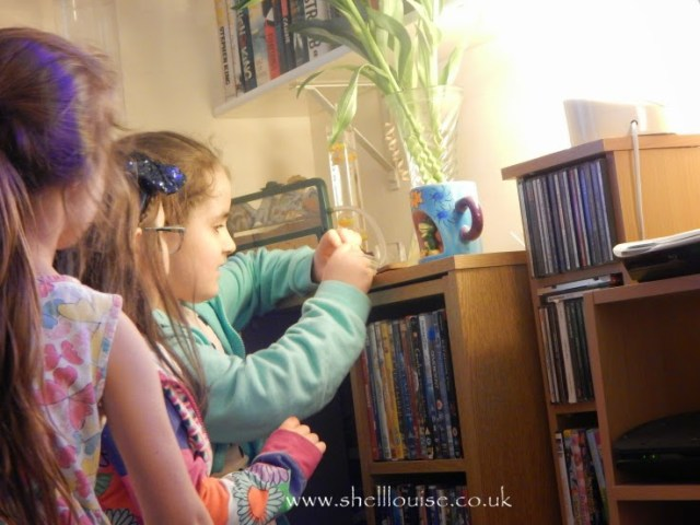 Kaycee and Ella setting up their Ant World from Wicked Uncle