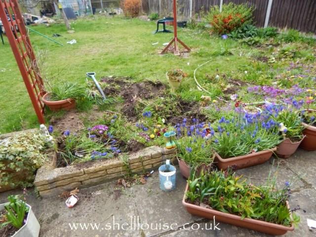 Garden before pond