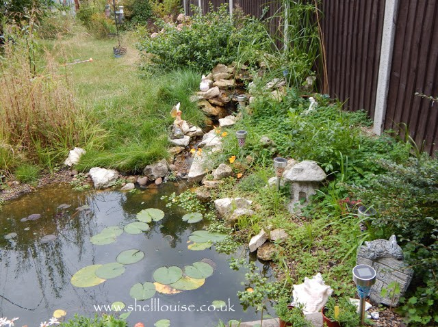 Pond, waterfall and rockery