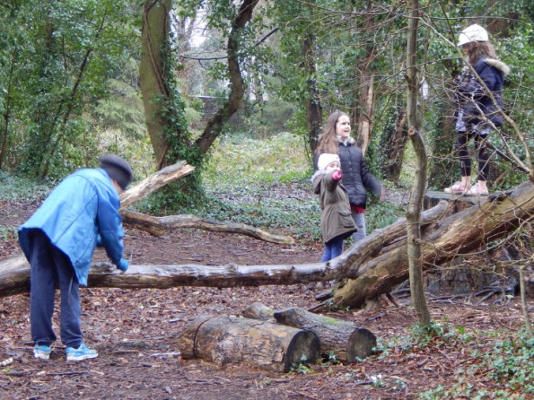 The kids playing on a fallen tree trunk at Hartsholme park