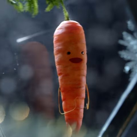 Aldi Christmas advert 2016 Kevin the carrot