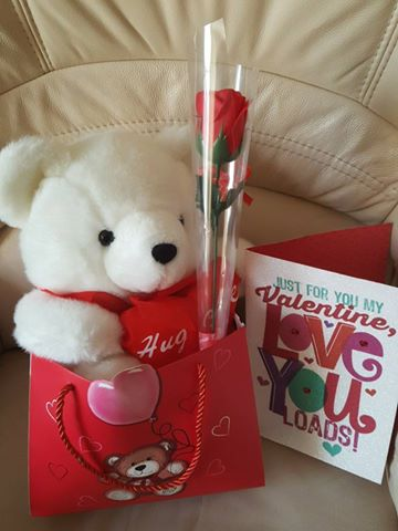 February 14th Ella's Valentine's Day present