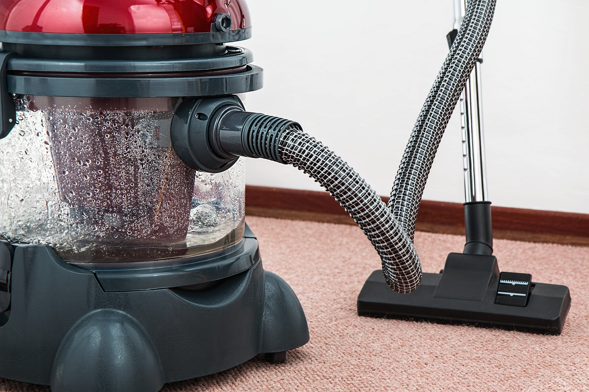 Choosing The Best Carpet Cleaner For Home Use Shell Louise