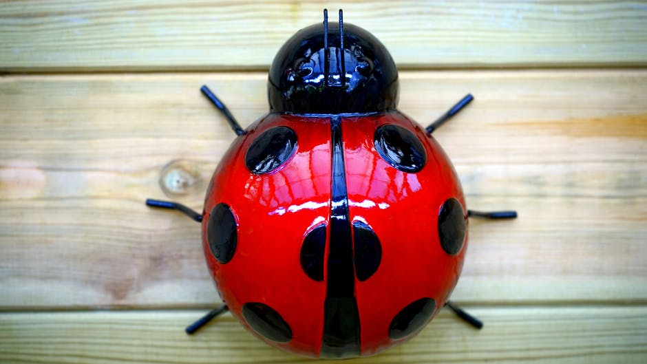 Ladybird garden ornament