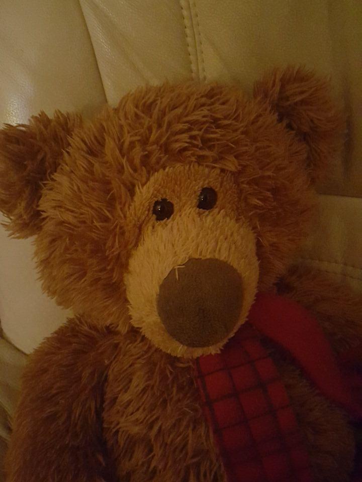 Teddy bear - October 1 day 12 pics