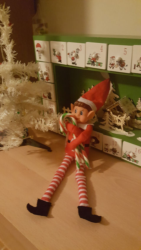 welcoming our elf, Nutmeg