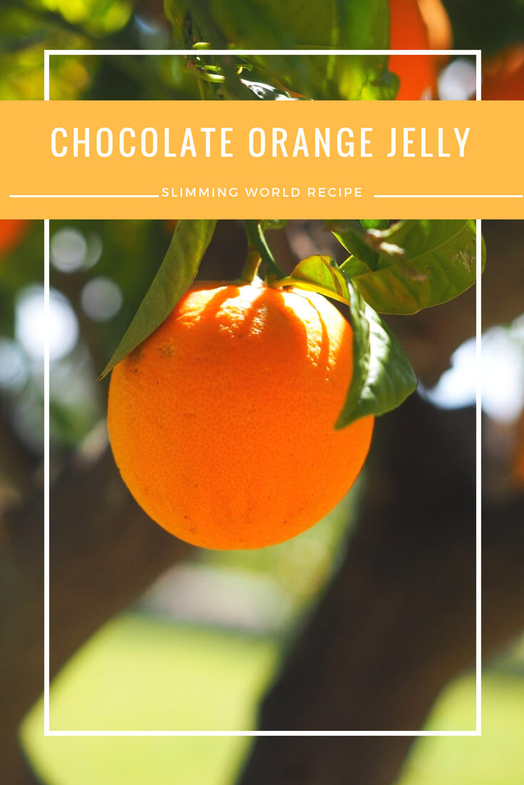 chocolate orange jelly Slimming World recipe
