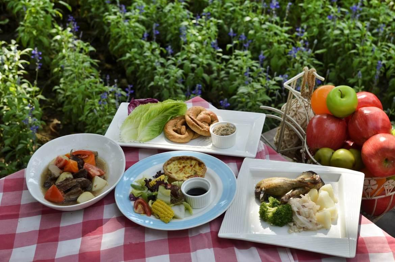 picnics in Summer