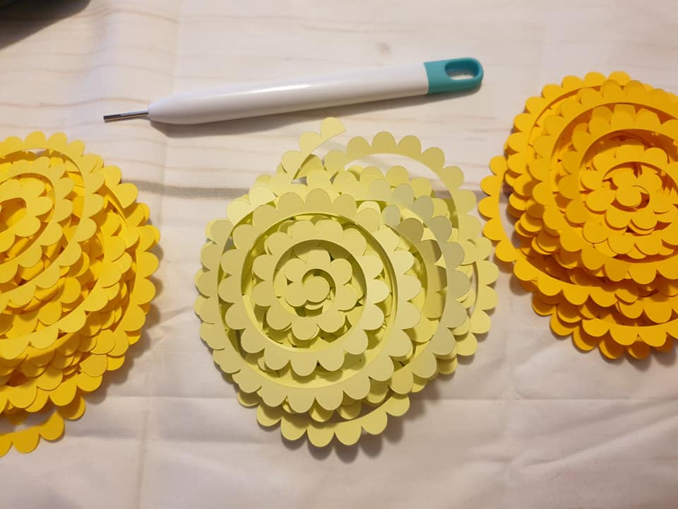 spirals ready to roll