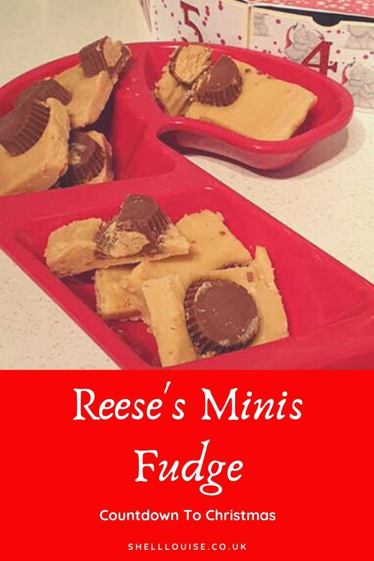 Reese's Minis Fudge