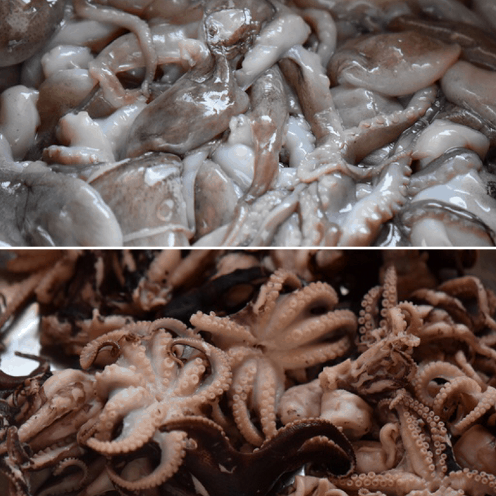 Two pictures showing the octopus, before and after being cooked for the seafood salad.