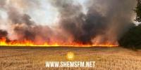 باجة ومجاز الباب: النيران تتلف 6 هكتارات من مزارع الحبوب